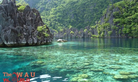 Here Are the Top 5 Most Beautiful Islands in the Philippines You Ought to Go To! | Vintage | WAU