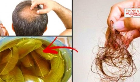 Solve that Hair Loss Problem And Make It Grow Fast Just By Using These 3 Miracle Ingredients, Amazing!