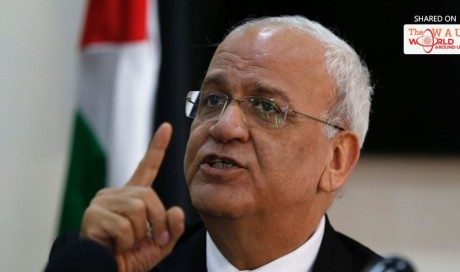 Top Palestinian Diplomat Urges Obama to Take Action on Occupation After U.S. Election