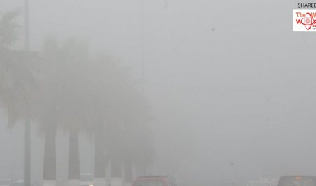 9 Tips to motorists for safe driving under heavy foggy conditions in Qatar