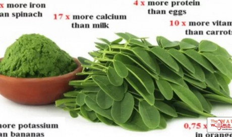 Amazing Study Results: A Green Herb Can Cure Cancers Like Liver, Ovarian, Melanoma, Lung And More