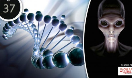 Aliens created our genetic code and signed it with the number 37, scientists say