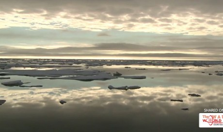 Humans Have Filled The Pristine Arctic Ocean With 300 Billion Pieces Of Floating Plastic