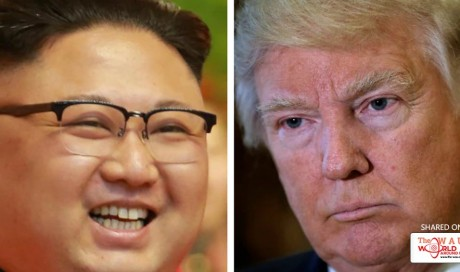 'The height of egotism': North Korea blasts Donald Trump for pulling out of Paris climate agreement