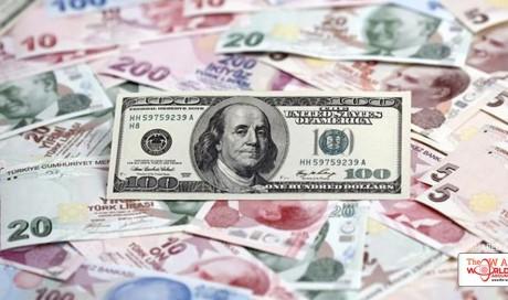 Experts forecast further depreciation in Turkish Lira in second half 2017
