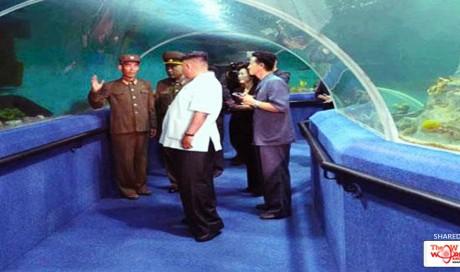 In Kim Jong Un's Summer Palace, Fun Meets Guns