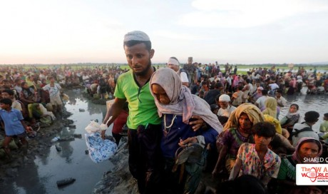 800k Rohingya flee to Bangladesh: A look at biggest refugee camps in the world