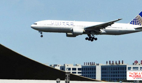 United Airlines Flight to Washington Forced to Turn Back to Beijing After Passenger Clashes With Flight Attendant
