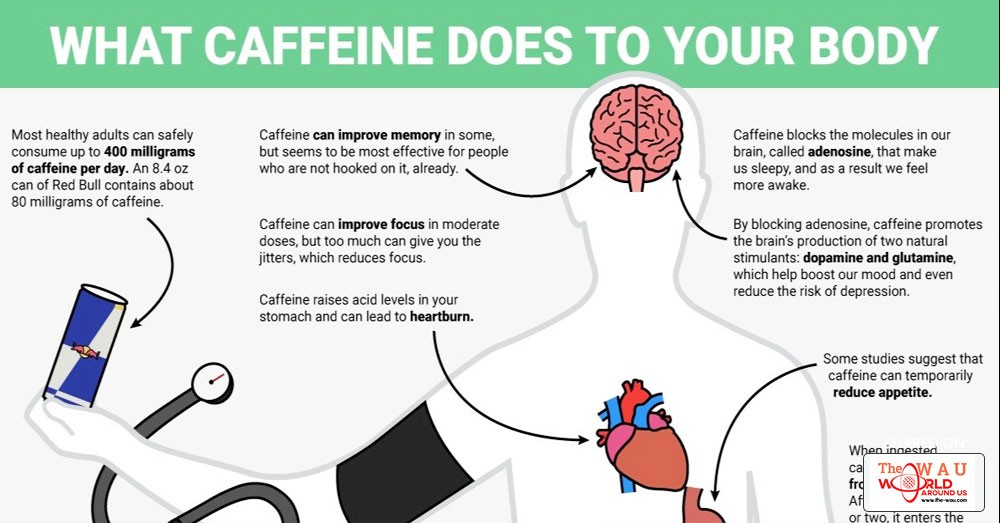 the physical and psychological effects of caffeine [4] effects of l-theanine or caffeine intake on changes in blood pressure under physical and psychological stresses, a yoto et al, j physiol anthropol [6] psychological effects of dietary components of tea: caffeine and l-theanine, j bryan, nutr rev.