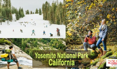 4 Seasons of Adventure in Yosemite National Park, California