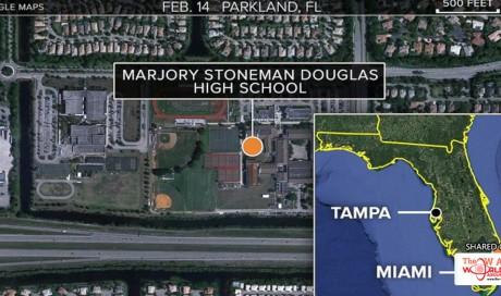 Ex-student Kills 17 in Shooting Spree at Florida High School