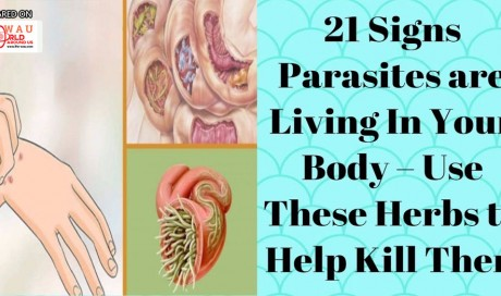 Here 21 Signs Parasites Are Living In Your Body!!!!