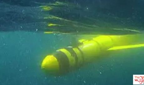 'Dead zone' larger than Scotland found by underwater robots in Arabian sea