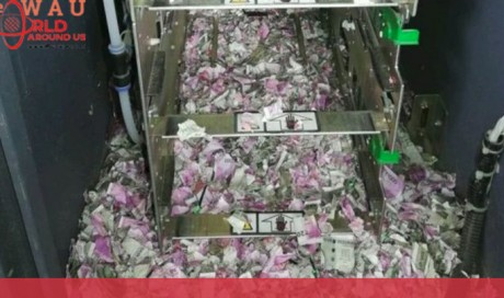 Mice Feast On Currency Notes Worth Rs 12 Lakh In SBI ATM In Assam