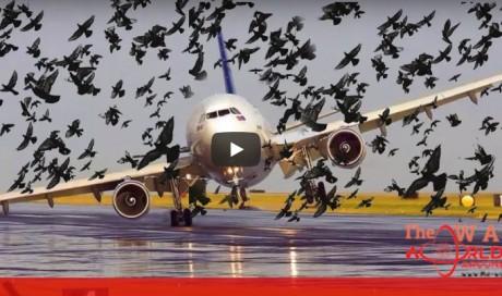 Top15 dangerous Airplane Landing And Take Of 2018