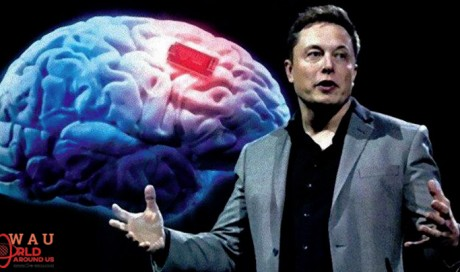Elon Musk Will Soon Launch 'Neuralink', Which Will Connect Your Brain To PC & Make You Immortal
