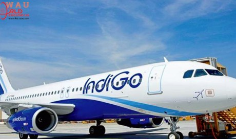Vehicle enters Hyderabad runway. IndiGo pilots stop takeoff just in time