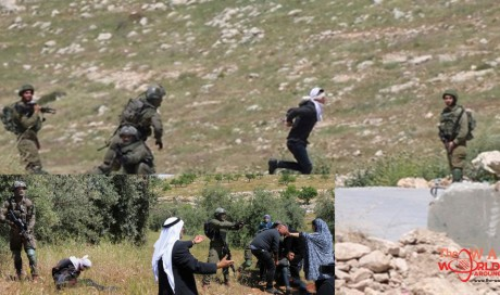 Israeli soldiers shoot handcuffed, blindfolded Palestinian teen