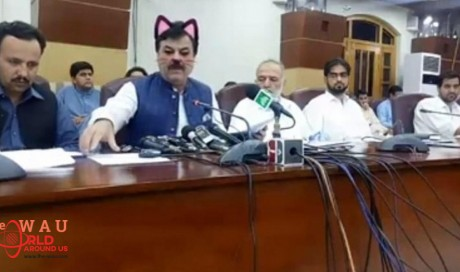 'Cat filter' used in Pakistan ministers' live broadcast goes viral