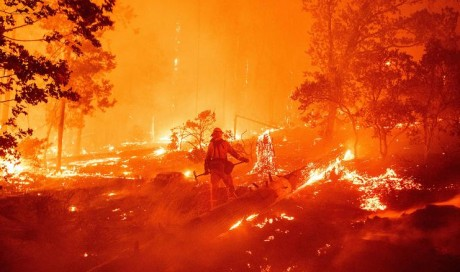 US West Coast fires: Trump fans flames of climate row in California