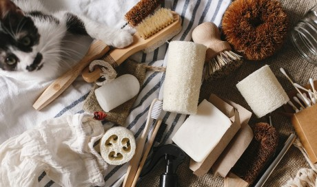 Eco-Friendly Products for Pet Owners